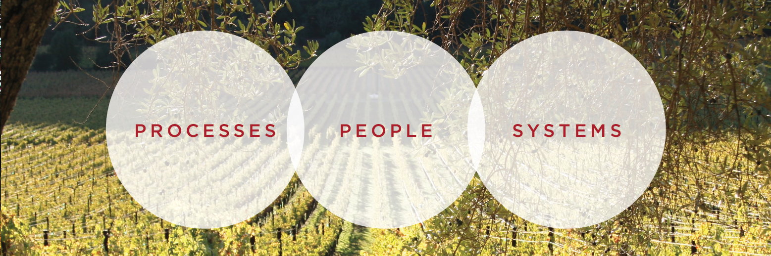 Processes, People and Systems